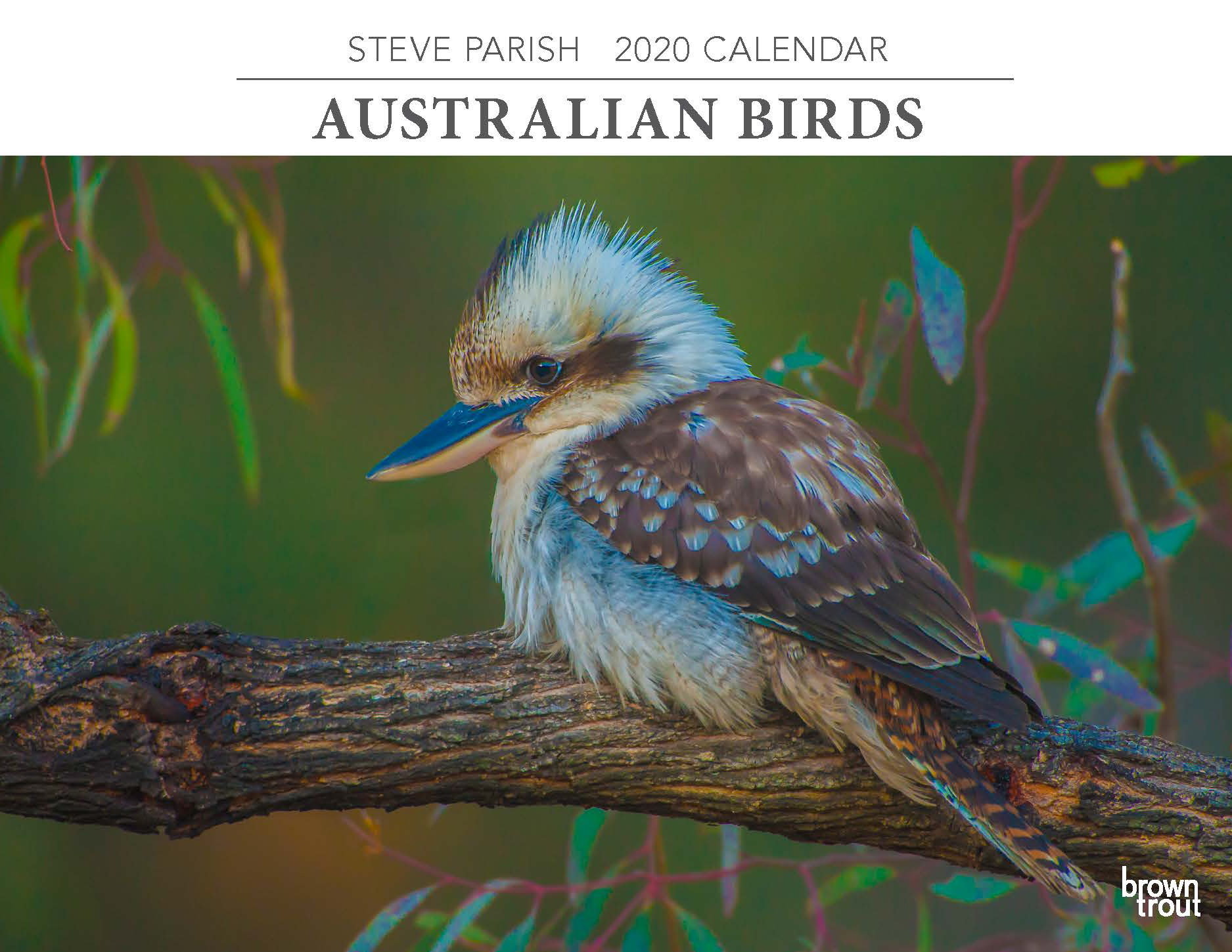Australian Birds 2020 Horizontal